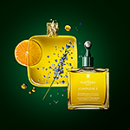 Complexe 5 - Stimulating plant concentrate with warming essential oils - All hair types | René Furterer